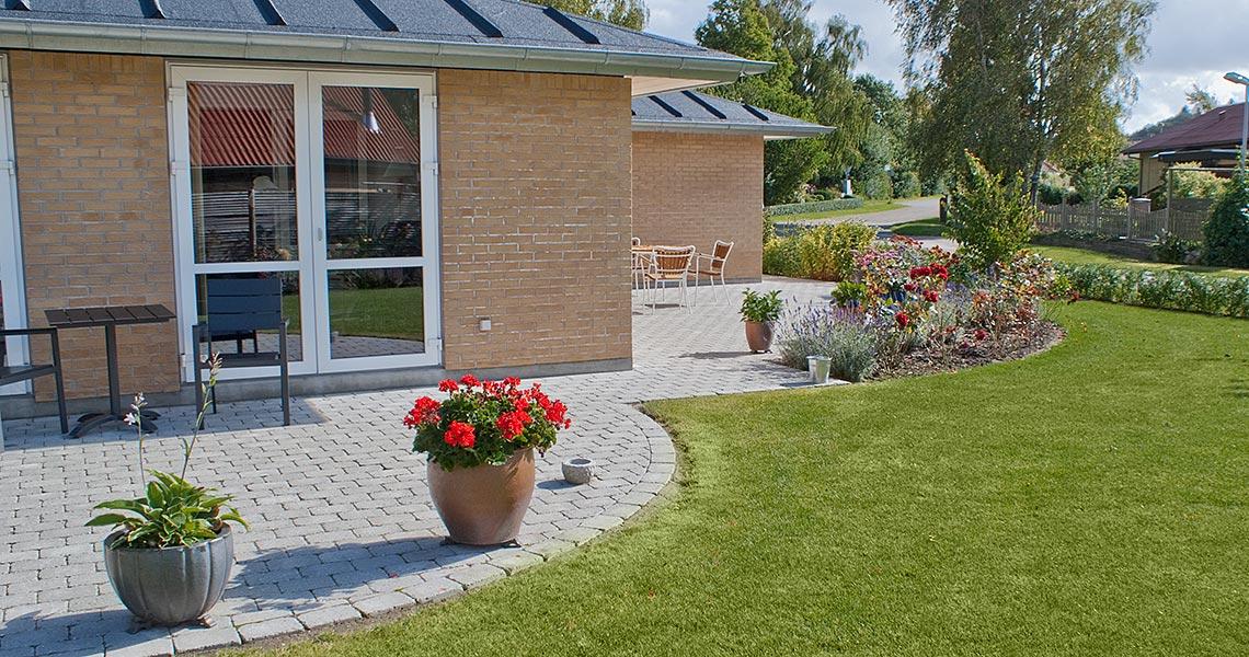 Planter til haven - AB Kirketoft Anlæg og Belægning Viborg